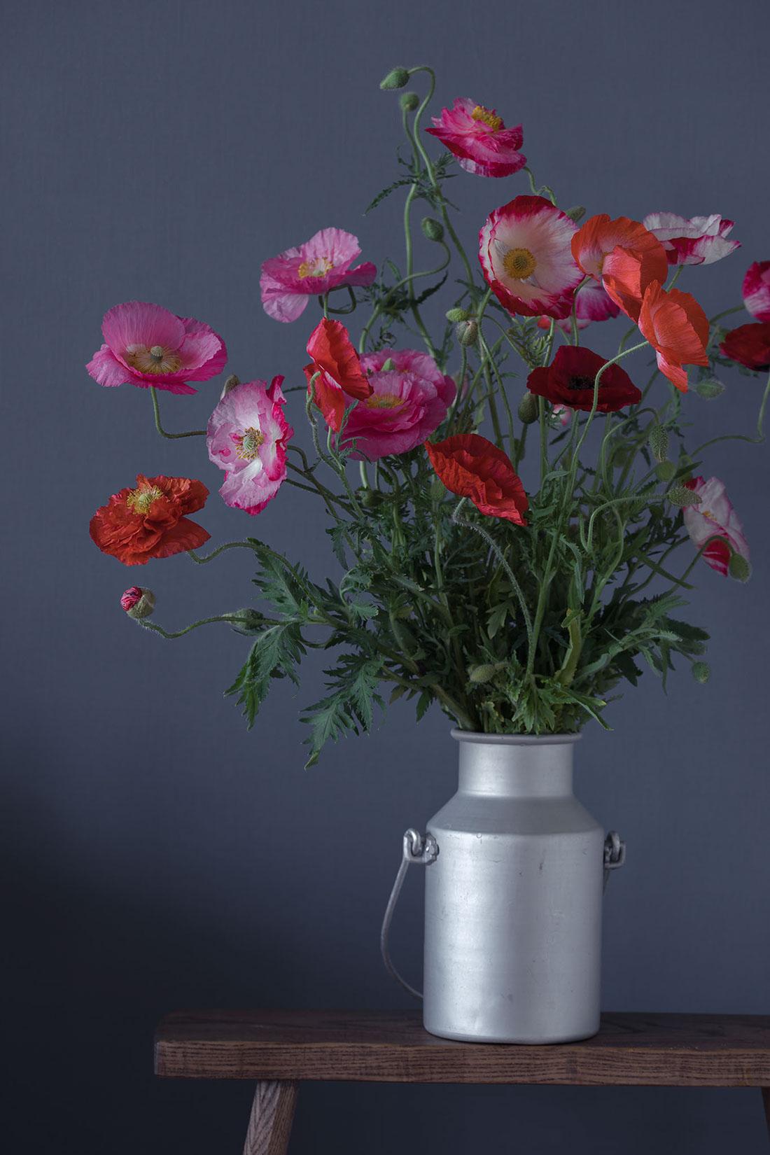ミルクポットに生けられたコクリコの花